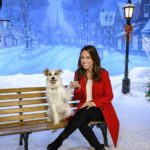 Hallmark's 2019 Christmas lineup includes 40 new movies. Here are our top 3 picks