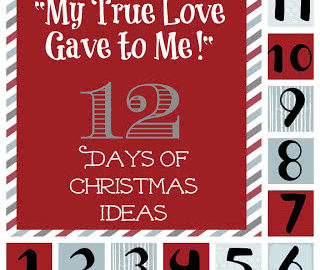 """""""My True Love Gave to Me"""" 12 Days of Christmas Ideas"""